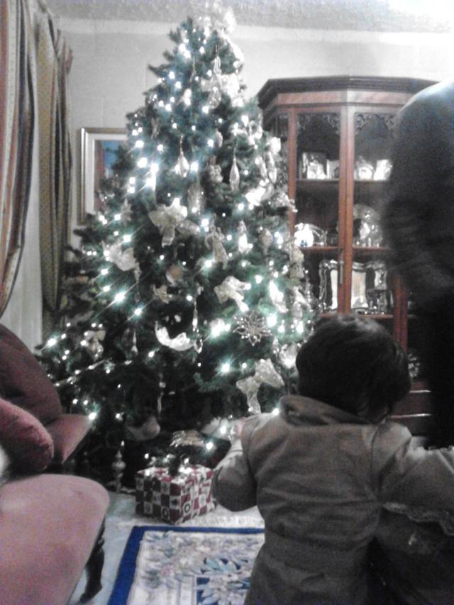 Admiring Nanna's Christmas tree